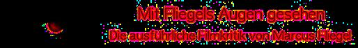 Marcus Fliegel Logo